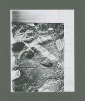 REX-XXV-4-30.jpg