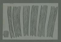 http://127.0.0.1/caicyt/dilafiles/grafica/REX-GD00692-1.jpg