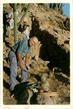 REX-FP11565 - Excavación en Choya 68. Catamarca, Argentina, 1997. Alberto Rex González y equipo trabajando en la excavación.