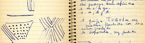 Avances sobre los Cuadernos de campo del Fondo Documental Dr. Alberto Rex González
